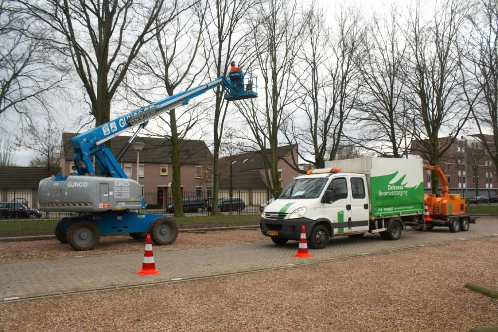 groenvoorziening Eindhoven door Delsasso Boomverzorging