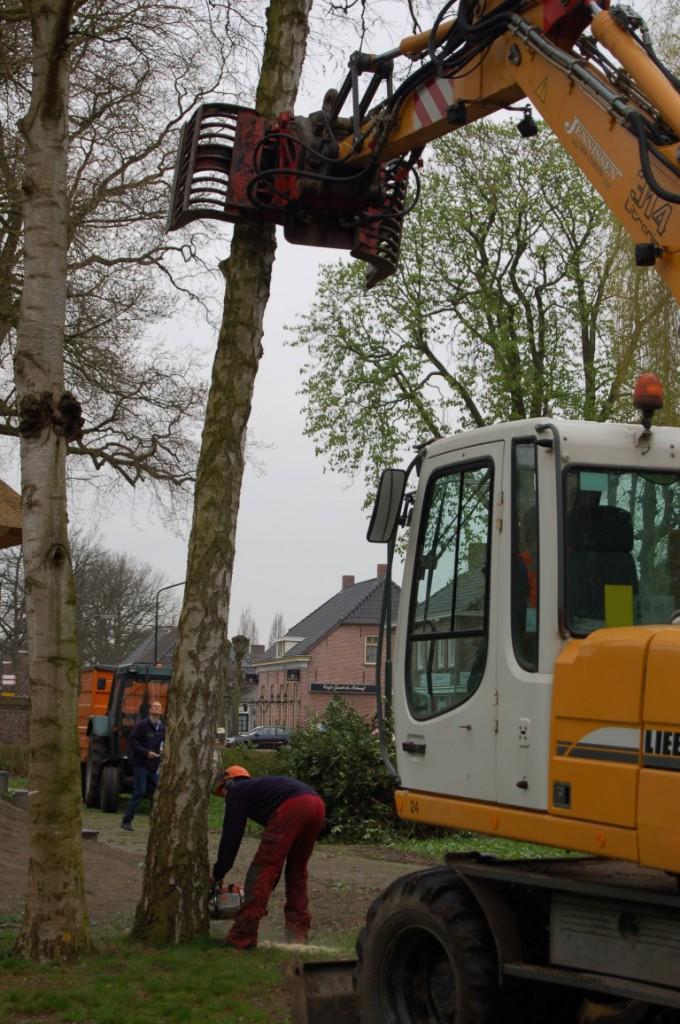graafmachine met bomengrijper delsasso boomverzorging