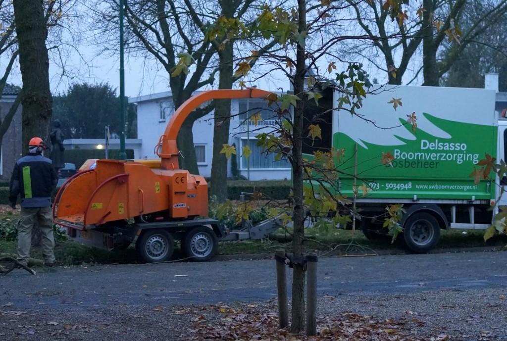 versnipperaar delsasso boomverzorging (Medium)